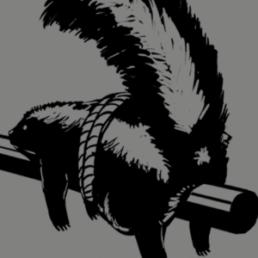 skunk tied to gun barrel illustration
